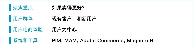 b2b e commerce medium term